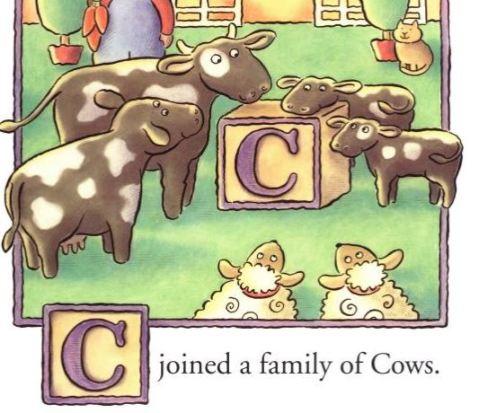 c cows